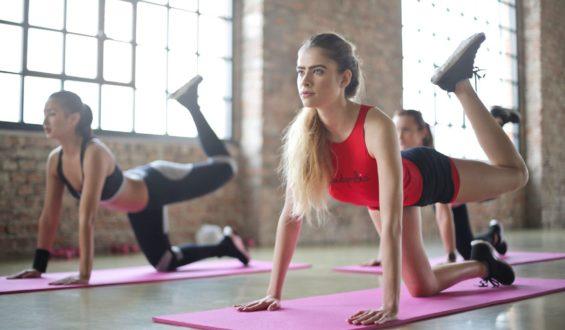 Czy odżywki treningowe są bezpieczne i zdrowe dla organizmu?